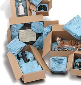 Instapak Quick® RT (Raum Temperatur) Verpackungslösung